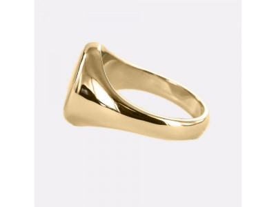 Square And Compass with G Oval Head Masonic Ring in Red With Fixed Head - 9ct Gold
