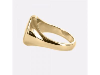 Triple Tau Masonic Ring With Fixed Head - 9ct Gold