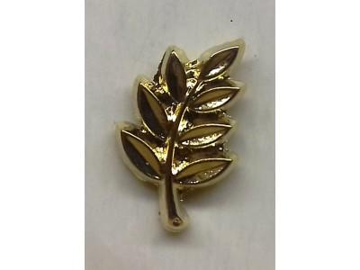 Acacia Leaf Lapel Pin
