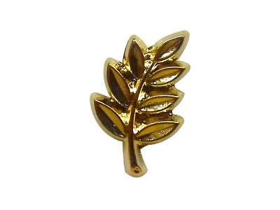 Freemasons Acacia Leaf Not Lapel Pin
