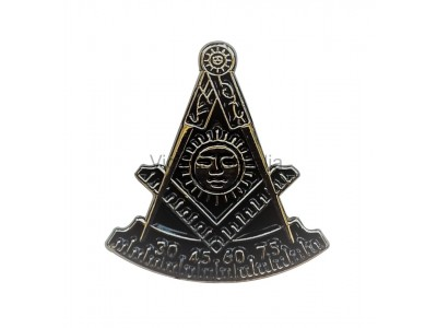 Freemasons Master Style Masonic Lapel Pin