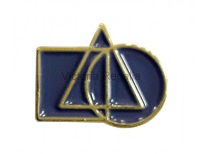 Cryptic Lapel Pin