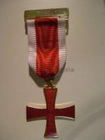 Irish Order of the Templar Breast Jewel- Irish Constitution